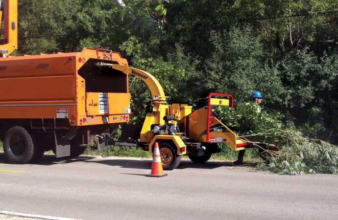 Commercial Tree Services-Fontainebleau FL Tree Trimming and Stump Grinding Services-We Offer Tree Trimming Services, Tree Removal, Tree Pruning, Tree Cutting, Residential and Commercial Tree Trimming Services, Storm Damage, Emergency Tree Removal, Land Clearing, Tree Companies, Tree Care Service, Stump Grinding, and we're the Best Tree Trimming Company Near You Guaranteed!