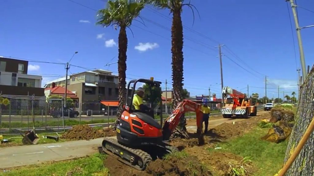 Palm Tree Removal-Fontainebleau FL Tree Trimming and Stump Grinding Services-We Offer Tree Trimming Services, Tree Removal, Tree Pruning, Tree Cutting, Residential and Commercial Tree Trimming Services, Storm Damage, Emergency Tree Removal, Land Clearing, Tree Companies, Tree Care Service, Stump Grinding, and we're the Best Tree Trimming Company Near You Guaranteed!